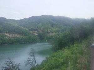 ziplining view
