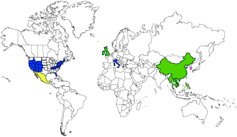 My world map